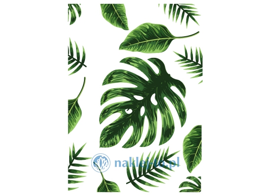 Plakat Monstera 2